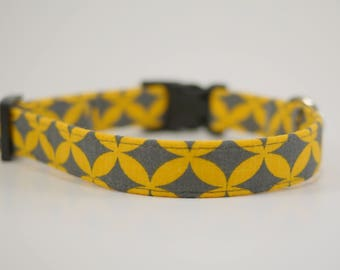 Yellow and Grey Collar