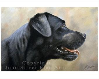 Black Labrador Dog Portrait by award winning artist JOHN SILVER. Personally signed A4 or A3 size Print. BL004SP