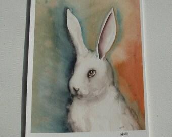Portrait of a White Rabbit -  Fine Art Bunny Print