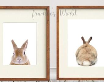 Bunny Rabbit Cottontail PRINT Rabbit butt,  Woodland Animal Art, Baby Animal Print, Nursery Decor, Baby Animal Wall Art, Bunny Rabbit