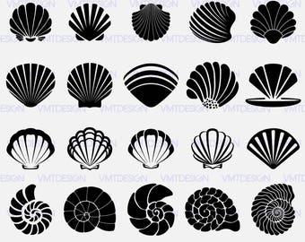 Shell SVG -  Sea Shell SVG - Sea Shell Vector - Sea Shell digital clipart for Design or more, files download eps, png, jpg, svg, dxf