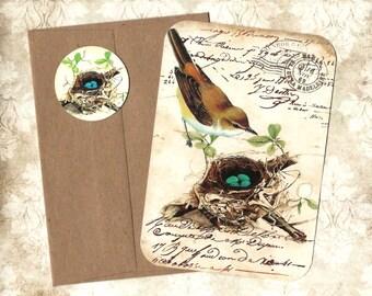 Note Card Set, Nest, Bird Note Cards, Nature, Bird Lover, Stickers