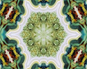 Petrified Wood Mandala Photograph 10x10 psychedelic kaleidoscope trippy pattern green teal vibrant colorful wall art decor cream