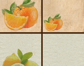 8 citrus backgrounds on cane paper