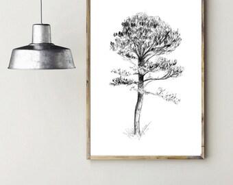 Tree Art - photo poster - black grey -  pencil sketch - tree illustration - zen drawing - tree poster - large size tree sketch dujardin