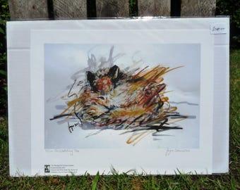 Fox Giclee Print - I'm Watching You