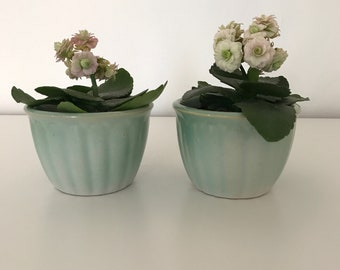 adorable tiny vintage bowls or planters.