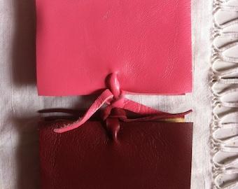 Set of 2 mini journals