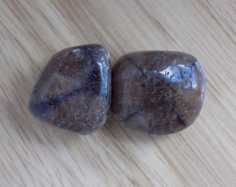 Two Chiastolite Cross Stones Tumbled Stones about 20mm each Natural Earth Specimen Palm Tumbled Worry Stone Lot of 2