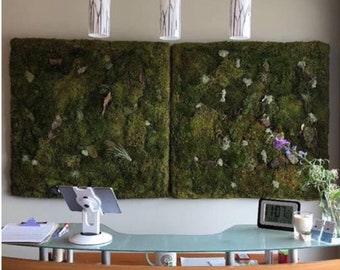 Moss wall art, live moss hanging, carefully designed for your home HUGE 30% off sale