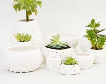 Handmade Ceramic Planter Spiky White Ceramic Bowl Ceramic Dish ~ Modern Planter White Porcelain Bowl Jewelry Dish Ceramic Gift Ring Dish