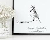 Meadowlark Bird Print | 8...