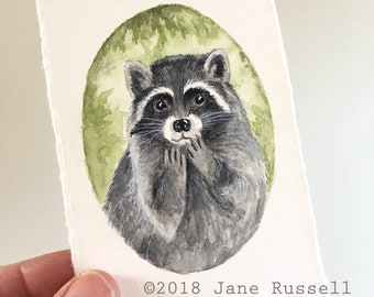 Rocky Raccoon Tiny Original Watercolor Painting Free Shipping