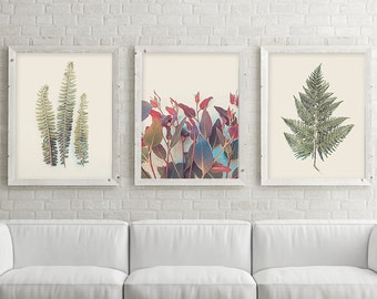 3 Botanical Prints, Botanical Print Set, Botanical Set of 3, Set of 3 Prints, Print Set, Fern, Leaves, Australian Art, Downloadable Prints