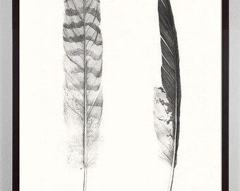 Feathers Art, Antique Feathers, Feather Art Print, Vintage Black and White Feathers Print, feather wall art, southwest, Rustic, Home Decor