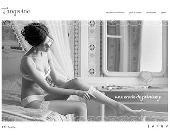 Shopify Webdesign eCommerce Web Design Custom Website Design Paket inc. Facebook Schaufenster Boutique Website Shopping Website-Design