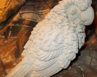 Concrete statue of a parrot