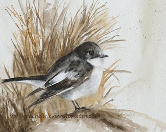 painting of Flycatcher painting Watercolor bird painting watercolor bird illustration bird vintage painting bird wall art PRINT brown gray
