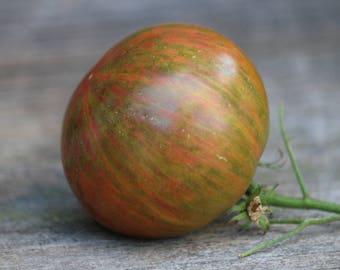 Tie Dye Tomato Seeds, rare tomato seeds, heirloom organic seeds harvest table vegetable garden striped tomato gardening