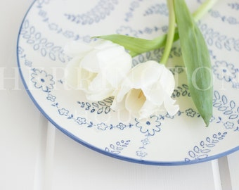 White tulips stock photo | Lifestyle stock photo - Photo for Instagram - Simple stock photo - Flower stock photo - Styled stock photo - blue