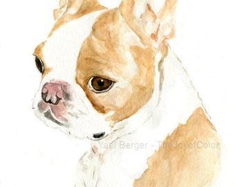 Custom dog portrait/ pet portrait/ custom pet portrait/ custom pet art/ dog portrait/ cat portrait/ watercolor pet portrait/ thejoyofcolor