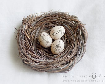 Personalized Gift for Mom, Personalized Egg in Nest Print, Mom Personalized Gift, Custom Name Eggs, Family Nest Artwork, Etsy Canada Gifts