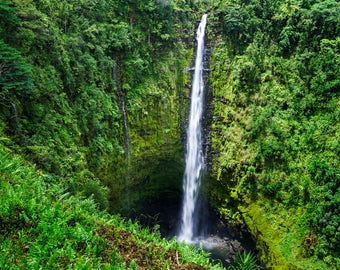 LIMITED EDITION - Akaka Falls - Rainforest Waterfall - Big Island, Hawaii - Fine Art Print - Home Decor