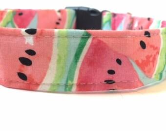 Watermelon Dog Collar - Great Summer Dog Collar!