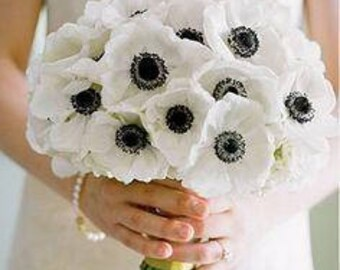 Poppy Black eye Susan bunch 6/bunch PU Material Floramatique Real Touch