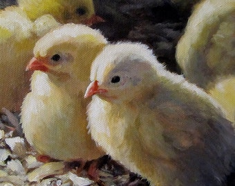 Animal Art Baby Birds Chicks - Golden Boys - 5x5 Art Print Farm Animals Baby Chickens Laser Print