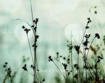 Nature Photography, Grass Silhouettes, Magical and Dreamy Wall Art, Nursery Print, Black, White, Blue