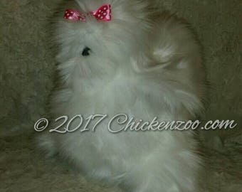 Silkie chicken, hen, Plush art doll, stuffed animal (Commission for February )