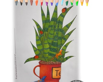 Coloring book for adults, Cacti, lizard, Ladybug