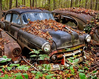 1953 Black Chevy in the Woods Photograph
