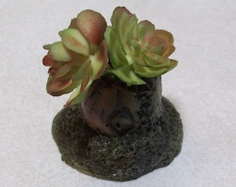 Miniature tree stump planter with succulants: Fairy garden or terrariums Polymer clay rustic tree stump