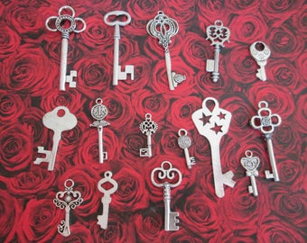 15 2.4 to 6.4 cm A silver key charms