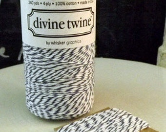 Blue White Cotton String Blueberry Divine Twine 10 yards