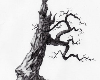 Original Pencil Sketch of Tree part of a large series. Tree Drawing, Wall Art. Home Decor, Framed and Matted. Owentree Studios