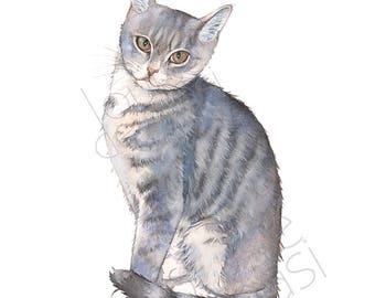 Cat print of watercolor painting 5 by 7 size, C23117, Cat watercolor painting print, kitten watercolor, kitten print - Louise De Masi©