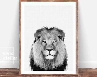 Lion Print, Animal Print, Nursery Wall Art, Nursery Prints, Digital Prints, Downloadable Prints, Printable Art, Photography Prints, Posters