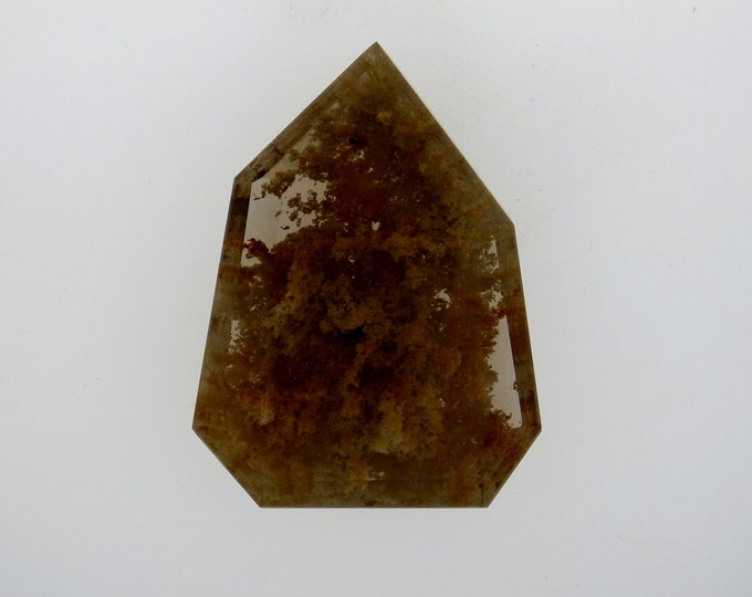 Large Free-Form Golden Moss Agate