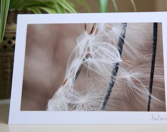 Nature Photo Art Card