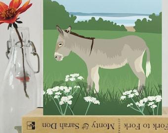 Donkey card - animal, farmyard, blank, birthday card