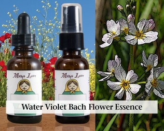 Water Violet Bach Flower Essence, 1 oz Dropper or Spray for Warm Connections with Other People when One Would Prefer to Withdraw