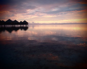 Kissed in Tahiti -- 8x10 Original Signed Fine Art Photograph