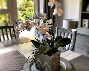 ARTIFICIAL  FAUX White Phalaenopsis Orchids With Leaves, Roots & Bark | Grey Ceramic Cube