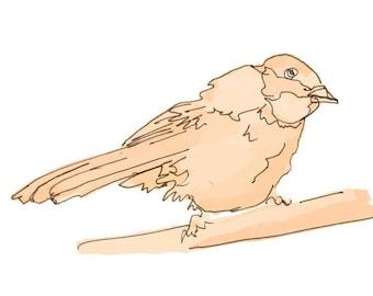 4X6 print - bird art study 19 in orange or lilac