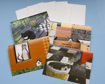 Blank Note Cards, Cat Cards, Cat Lovers, Gift Set, Photo Notecards, Assorted Cards, Deborah Julian