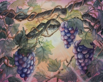 Sunset Vineyard Watercolor Print Grapes Wine Kitchen Italy Napa Valley Tuscan Painting ART Reinecke