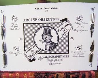 Calligraphy Copperplate & Spencerian Nibs Pack - Vintage Pen Nib Set